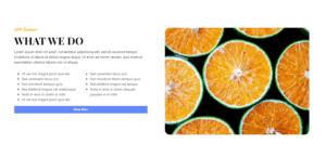heading-iconlist-button-image-twocolumns
